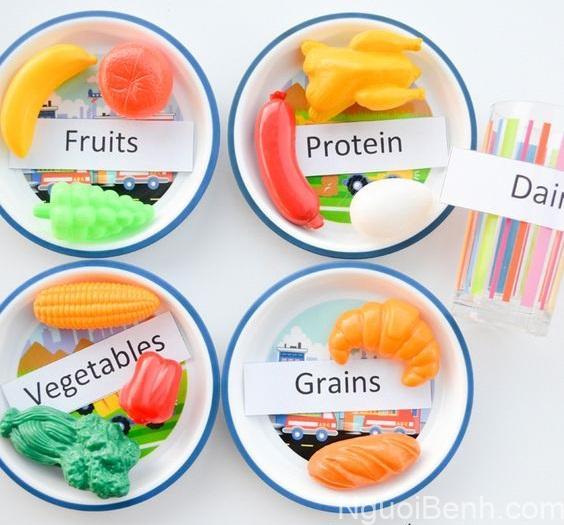 Các nhóm chất dinh dưỡng